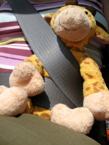 Gilbie on a Road Trip!