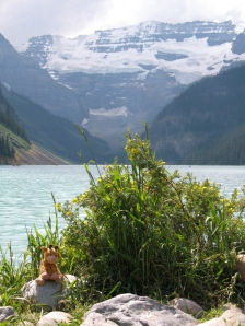 Gilbie by a Mountain Lake (can you see the glacier in the background?)