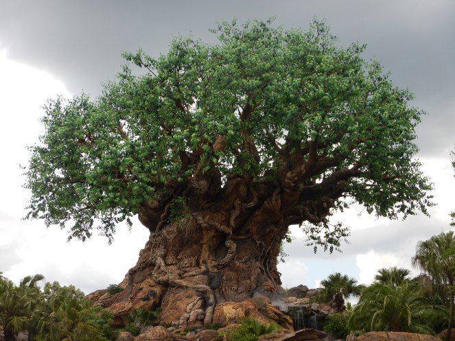 Tree of Life at Disney's Animal Kingdom.  I love trees so much...